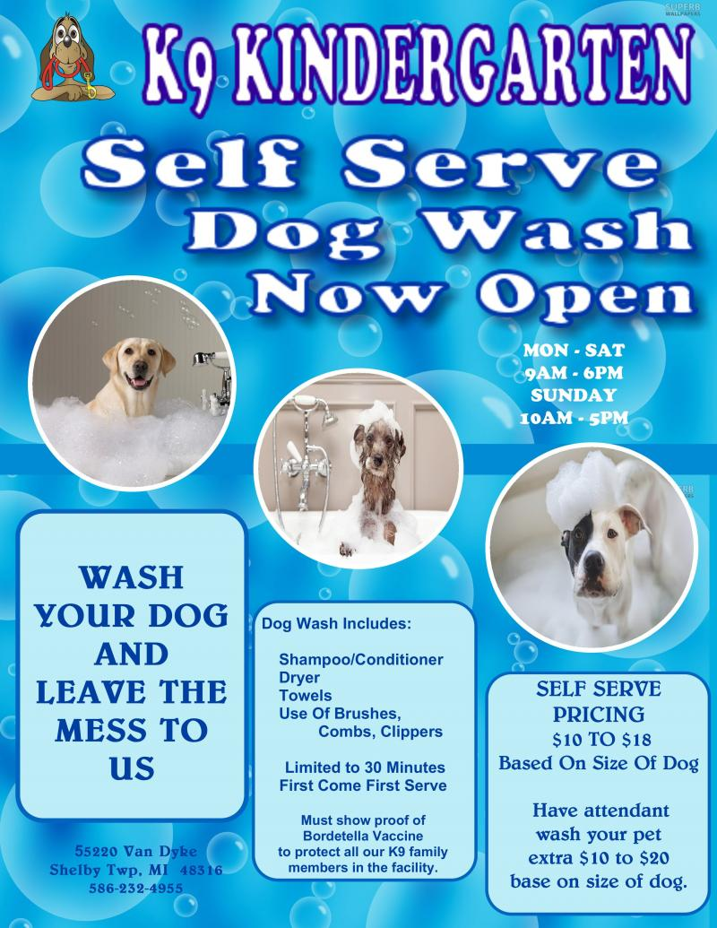 K9 kindergarten k9 cuisine n more k9 groomingdog wash self serve dog wash if you would like a bather to wash dry clean ears and nails pet please call ahead to schedule an appointment 586 232 4955 solutioingenieria Gallery